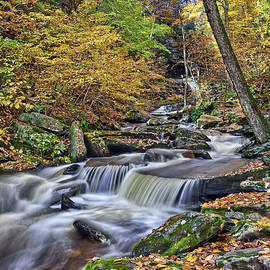 Huron Waterfall by Marcia Colelli