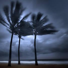 Mark Andrew Thomas - Hurricane Matthew