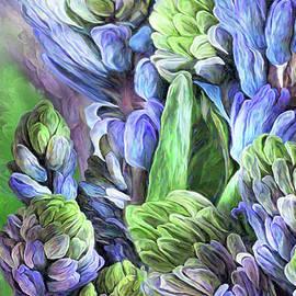 Hyacinth Moods 2 by Carol Cavalaris