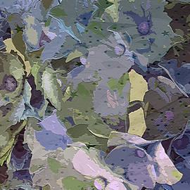 Hydrangea Celebration by Claudia O'Brien