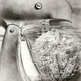 Sharon Popek - Hydrangea Mix