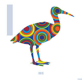 I is for Ibis - Ron Magnes