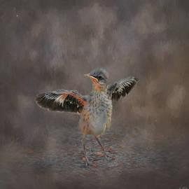 Jai Johnson - I Know I Can Fly