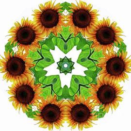 Carol F Austin - I Love Sunflowers Kaleidoscope Wall Art