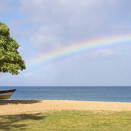 Brian Harig - I Want To Be There Too - North Shore Oahu Hawaii