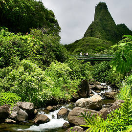 Iao Needle  by Nature  Photographer