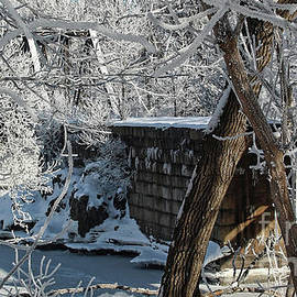 Laura Mace Rand - Ice Covered Rails