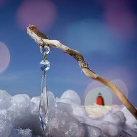 Ice Crystal by LuAnn Griffin
