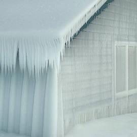 David T Wilkinson - Ice House Wonderland