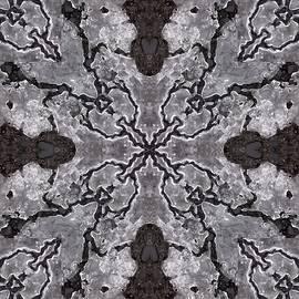 Lori Kingston - Ice Multiplied