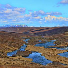 Iceland Landscape # 1 by Allen Beatty