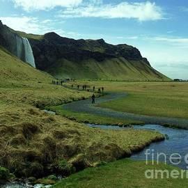 Icelandic Scenery  by Courtney Dagan For Poet's Eye