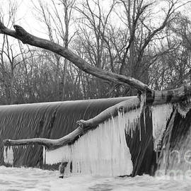 Icicle Laden Branch Over The Waterfall by Christopher Lotito