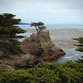 Icon Of Pebble Beach by Glenn McCarthy Art and Photography
