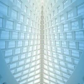Ann Horn - Iconic Skylight