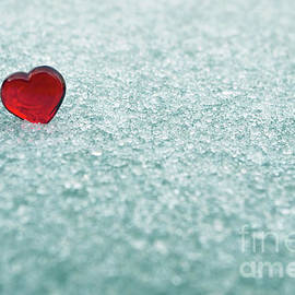 Liz Masoner - Icy Red Heart