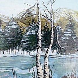 Icy Waters by Elizabeth A Gawronski