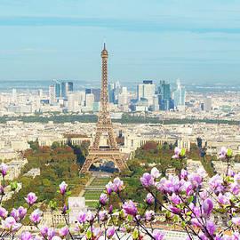 Anastasy Yarmolovich - Spring Cityscape of Paris