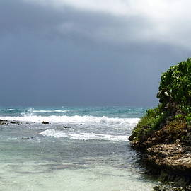 Carla Parris - Impending Storm on Prickly Pear Island