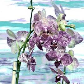 Imperial Orchids by Marsha Heiken