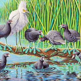 in Kahoots with Coots by Tish Wynne