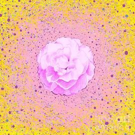 Helena Tiainen - In Pink