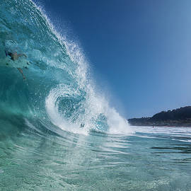 In The Curl by Sean Davey