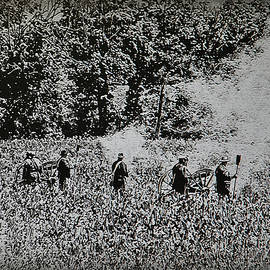 Bill Cannon - In the Heat of Battle - Gettysburg Pa