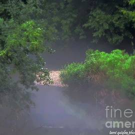 Tami Quigley - In The Mist Of A Summer Evening