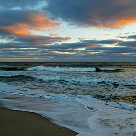Dianne Cowen - In The Mood - Cape Cod National Seashore