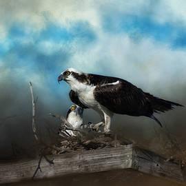 In The Nest by Kim Hojnacki
