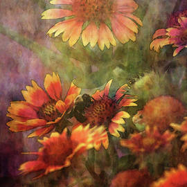 Indian Blanket And Bee 4354 Idp_2 by Steven Ward