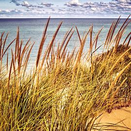Roger Passman - Indiana Dunes National Lakeshore