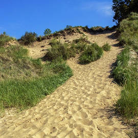 Indiana Dunes National Lakeshore by Sally Weigand