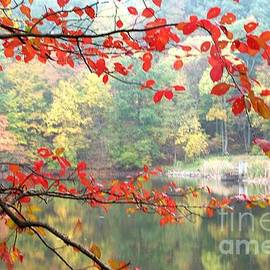 Indiana in Autumn Brown County Lakeside by Charlene Cox