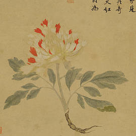 asian art - Ink painting peony