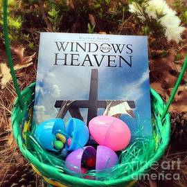 Matthew Seufer - lnspirational Book Windows From Heaven