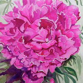Patty Strubinger - Intense Pink