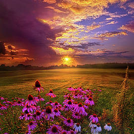 Into The Moment - Phil Koch
