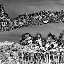 Ninie AG - Inverted BW Landscape #19