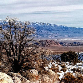 Inyo Mountains - Owens Valley by Glenn McCarthy Art and Photography