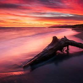 Iona Beach Sunset by Alexis Birkill