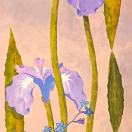 Iris and Forgetmenots by Teresa Ascone
