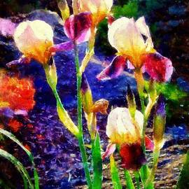 Iris Song by Janine Riley