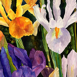 Irises in Bloom by Anne Gifford