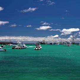 Isla Santa Cruz Harbor by Sally Weigand