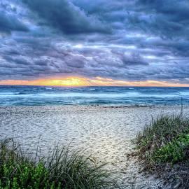 Island Dune Trails by Debra and Dave Vanderlaan