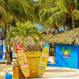 Janal Koenig - Island Fun