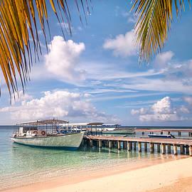Island Journey by Jenny Rainbow