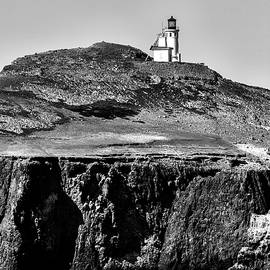 Island Lighthouse by David Millenheft